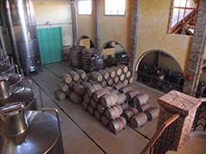 Parte de dentro da adega - Tonéis de Vinho