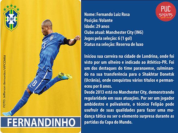 Volante - Fernandinho