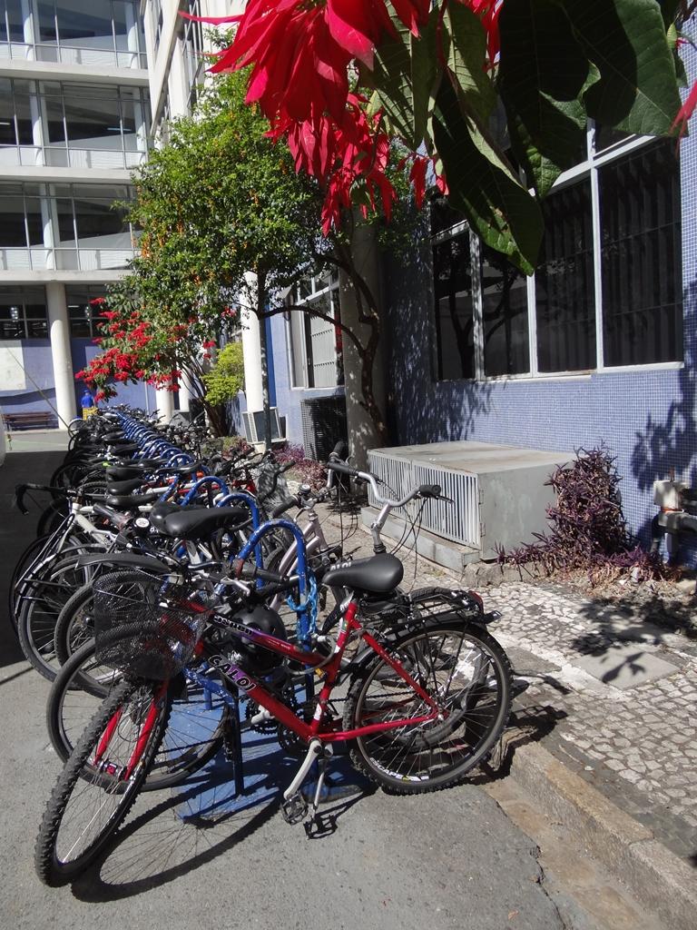 Proposta visa instituir a bicicleta como modal de transporte regular em Curitiba e garantir melhor infraestrutura ao ciclista. | Foto: Maxinie Cretella
